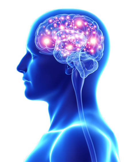 Abteilung für Klinische Psychologie, Psychiatrie und Neurologie